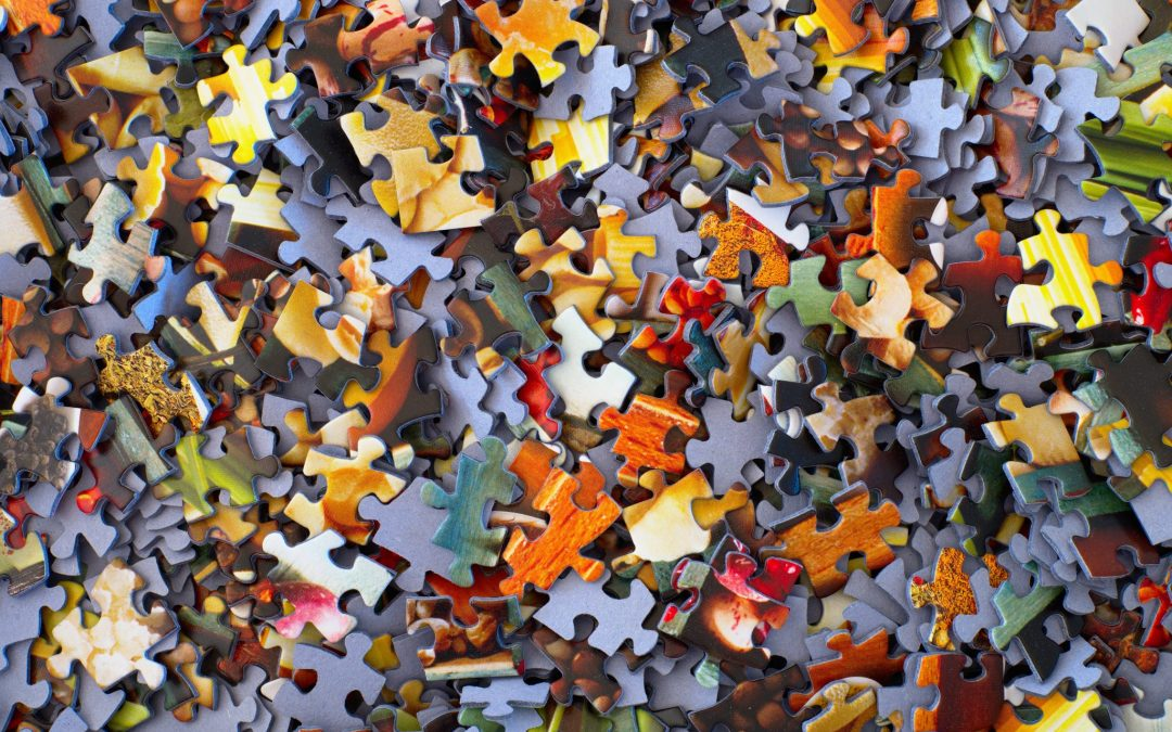 Fitting into the Puzzle